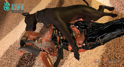 Slut-Orgasma Celeste SecondLife Celeste Bloch whore slut dog slut sex slave fetish milf latex rubber k9 animal cunt